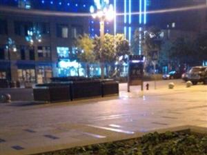合江音乐广场边上居然有人种菜!