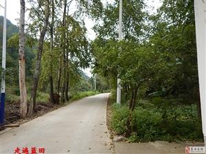 走遍蓝田、2017五羊本田、甘坪村2组、5组、穿越旅行。