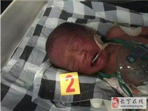 揪心!宜宾早产三胞胎加起来才7斤多!随时可能死亡…