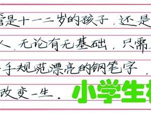 规范汉字的专家中宫格五天练字速成广汉校区长期招收学生(图片)