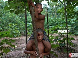 凤凰网报道威尼斯人网址县张辉公园孩子们学杂技的艰辛快乐生活