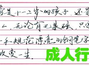 练字五天速成,专利教材、专利方法、不临摹不描,广汉中宫格欢迎您