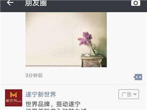 微信朋友圈广告投放找四川纵达广告