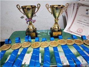 热烈祝贺拉丁舞吧2017CBDF中国杯巡回赛武汉站荣获十枚金牌四个奖杯
