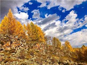 金色阿尔山
