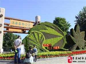 欢度双节 85万盆鲜花扮靓济南市属公园景区