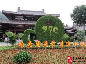欢度双节;85万盆鲜花扮靓济南市属公园景区