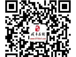 �D文直播:10.2�咸�S各地洪水�暮η�r收集帖,不�喔�新!!!