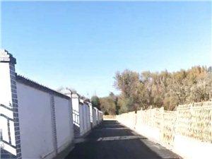 瓜州�r村后院都�上柏油�R路了,新�r村建�O再向前�~出一步