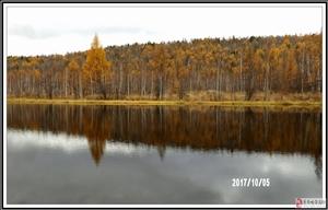 兴安之秋――十一北极之行