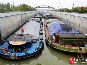 """京杭大运河台儿庄段迎来""""北煤南运""""高峰"""