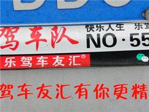 �盍�否{�友�R武功聚��交流活��