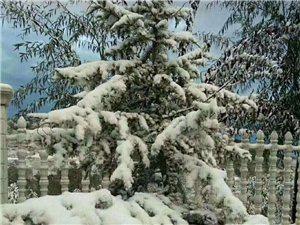 2017大美清水首场降雪让清水变成了一幅水墨画