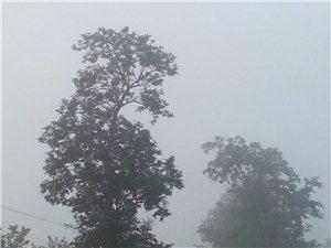 ★〓发现・大美建平微视界之晨雾 C〓★