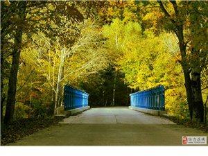 家乡之秋,上帝打翻的调色板,让这片土地色彩斑斓