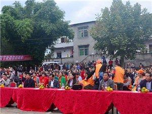 简阳市石桥镇举行第一届届柑橘采摘节