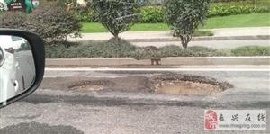 雉洲大道路面出现积水大坑,过往车辆请注意