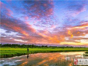 肃州湿地景观(组图)