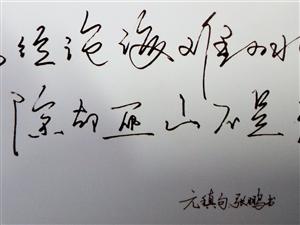 邹城地税局:张鹏先生书法作品欣赏!!