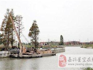 朱明港护岸建设 本月底完成施工