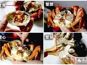 又到秋高蟹肥时~枣阳的吃货们,你知道怎么吃蟹才正确嘛?