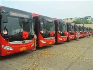 富顺人,你支持红旗大桥通行公交车吗?