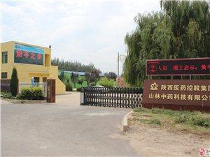 �西�t�控股集�F山林中�科技有限公司招聘