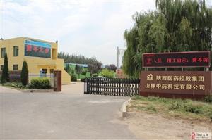 陕西医药控股集团山林中药科技有限公司招聘