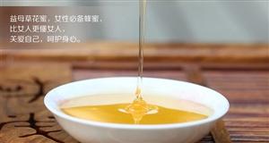 辽宁供销e家太阳泪黑蜂益母草原蜜是精心的食补