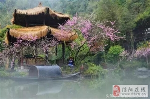 在新疆大漠深处有个神秘小渔村,占了中国四大顶级美景!