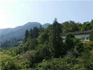 揭西�L光之山明水秀、巍峨挺立的猴叫山!