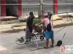 化州小伙子自制飞机试飞,真是高手在民间!