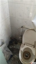 需要维修厕所