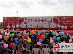 嘉兴平湖50对老人共庆金婚 婚龄最长的已66年