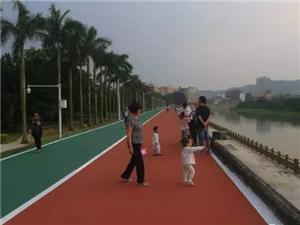 高州鉴江河瀛洲公园段绿道,最适合情侣漫步之地!