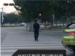 交通违法曝光之行人篇