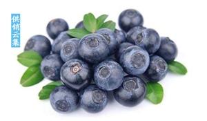 吃蓝莓果干怎么会有这么多神奇功效!