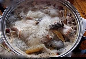 吃猫吃蛇乱捕滥杀的后果