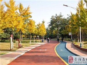 荥阳植物园――散步边走边看