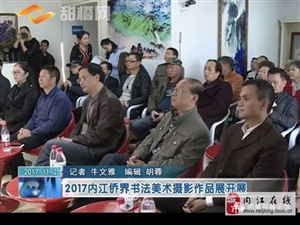 内江市侨界书法美术摄影作品展在芭蕉井展览馆开幕