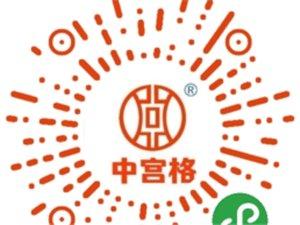 广汉中宫格练字速成、免费在线预约试听、端正坐姿握笔及书写习惯