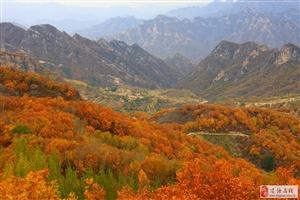 秋游仙台山