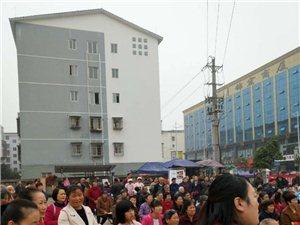 """泸县义工协会开展""""保护环境"""