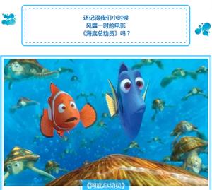 哇!门票免费送!澳门拉斯维加斯网上游戏宏远广场奇幻海洋馆隆重开幕!