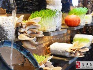 荔城美食:现吃现摘的火锅?活久见!!