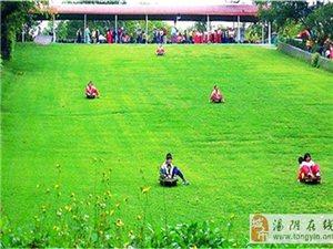 """重磅消息!!!趣味滑草场即将登陆安阳长春观 让你体验""""草上飞"""""""