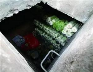 今日立冬,不少北方人,尤其是老人都开始买白菜囤着过冬