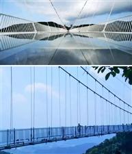 龙南出发,韶关云门山玻璃桥+花海休闲一日游,118元/人