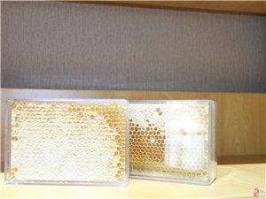 兴丰农场的蜂巢蜜