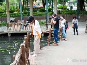 """揭西四个旅游景区被市确定为""""摄影创作基地"""""""